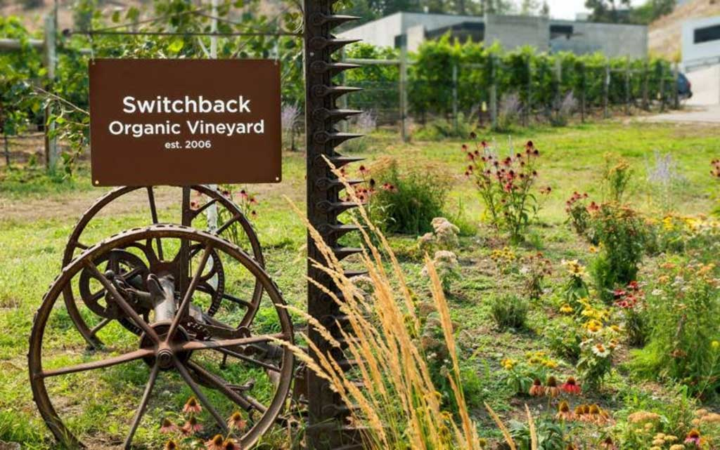 Switchback Vineyard Now Officially Certified Organic