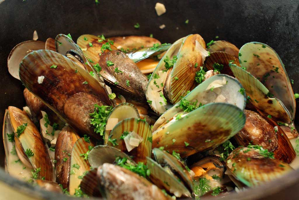 Green Lipped Mussels, New Zealand | TheCulinaryTravelGuide.com