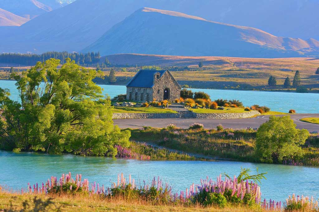 Your Guide to a Great Gastronomic Escape in New Zealand