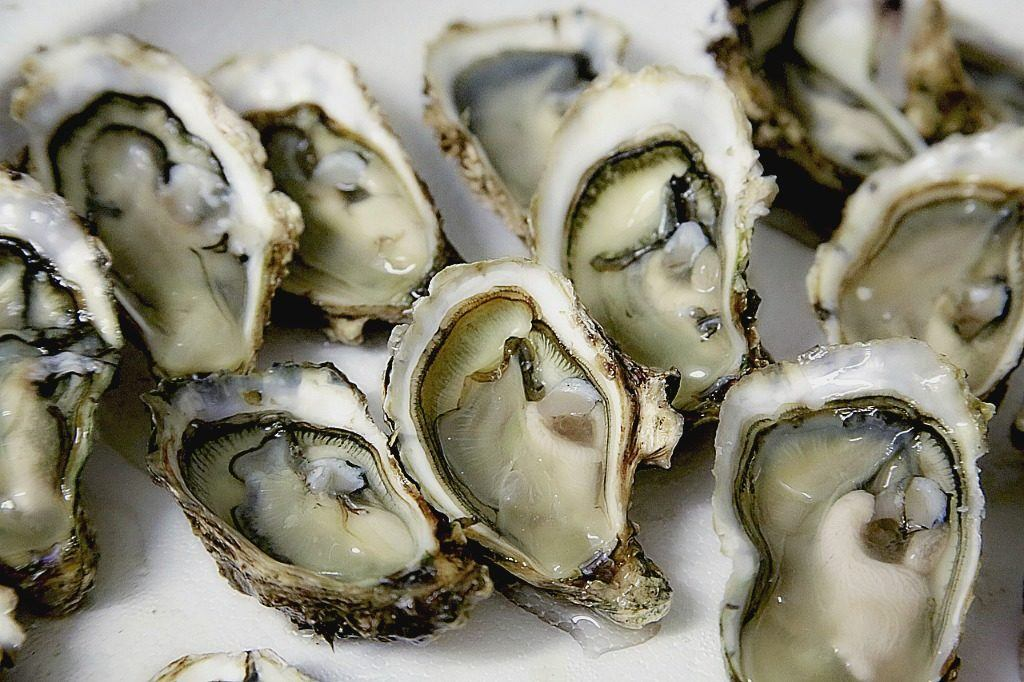 5 Foreign Delicacies You Simply Have to Try - Bluff Oysters